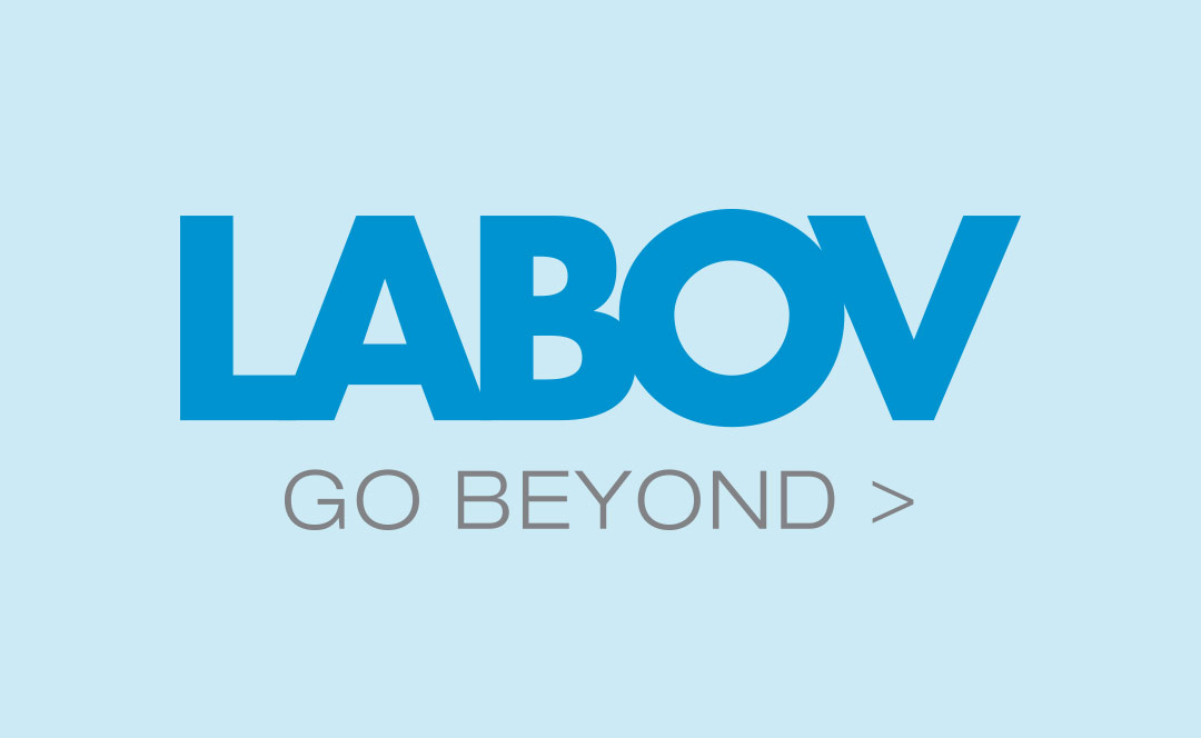 LABOV Developing Training for Carrier Corporation